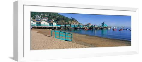 Casino Building and Avalon Harbor, Avalon, Catalina Island, California--Framed Art Print