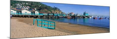 Casino Building and Avalon Harbor, Avalon, Catalina Island, California--Mounted Photographic Print