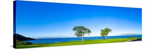 Makena Golf Course in Makena Area of Maui, Hawaii, Usa--Stretched Canvas Print