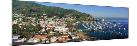 Casino Building and Avalon Harbor, Avalon, Catalina Island, California--Mounted Photographic Print