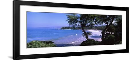 Trees on the Beach, Mauna Kea, Hawaii, Usa--Framed Art Print
