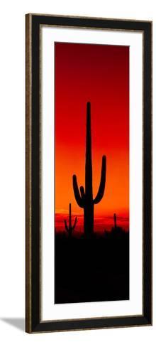 Silhouette of Saguaro Cactus at Sunset, Arizona, Usa--Framed Art Print