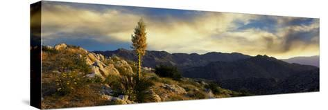 Clouds over Anza Borrego Desert State Park, San Diego County, California, Usa--Stretched Canvas Print