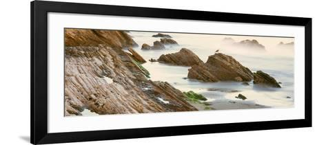 Seagull Perching on the Beach, Gaviota, Santa Barbara County, California, Usa--Framed Art Print
