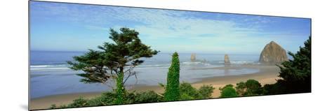 Cannon Beach, Oregon--Mounted Photographic Print