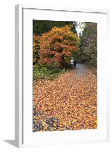 Autumn Leaves Along the Old Nakasendo Highway, Magome, Kiso Valley Nakasendo, Central Honshu, Japan-Stuart Black-Framed Art Print