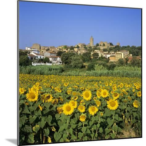Hilltop Village Above Sunflower Field, Pals, Catalunya (Costa Brava), Spain-Stuart Black-Mounted Photographic Print