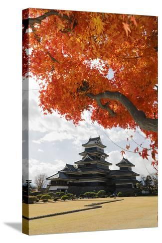 Matsumoto-Jo (Wooden Castle) in Autumn, Matsumoto, Central Honshu, Japan, Asia-Stuart Black-Stretched Canvas Print