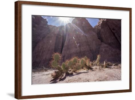 Los Colorados, Salta Region, Argentina-Peter Groenendijk-Framed Art Print
