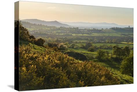Cotswold Landscape with View to Malvern Hills-Stuart Black-Stretched Canvas Print