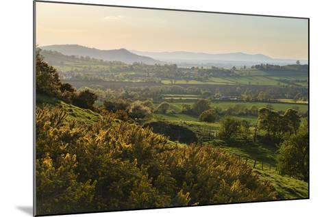 Cotswold Landscape with View to Malvern Hills-Stuart Black-Mounted Photographic Print