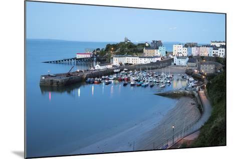 View over Harbour and Castle, Tenby, Carmarthen Bay, Pembrokeshire, Wales, United Kingdom, Europe-Stuart Black-Mounted Photographic Print