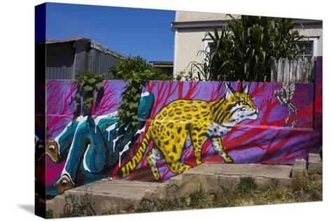 Wonderful Graffiti, Valparaiso, Chile-Peter Groenendijk-Stretched Canvas Print