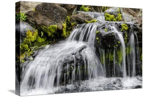Small Stream Cascading over Rocks in Mountains of Kilauea-Michael DeFreitas-Stretched Canvas Print