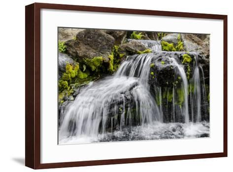 Small Stream Cascading over Rocks in Mountains of Kilauea-Michael DeFreitas-Framed Art Print