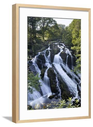 Swallow Falls, Betws-Y-Coed, Snowdonia National Park, Conwy, Wales, United Kingdom, Europe-Stuart Black-Framed Art Print