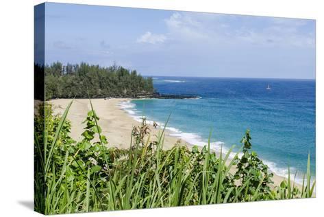 Waikoko Beach, Kauai, Hawaii, United States of America, Pacific-Michael DeFreitas-Stretched Canvas Print