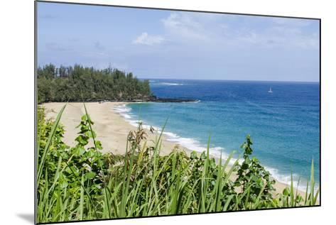 Waikoko Beach, Kauai, Hawaii, United States of America, Pacific-Michael DeFreitas-Mounted Photographic Print