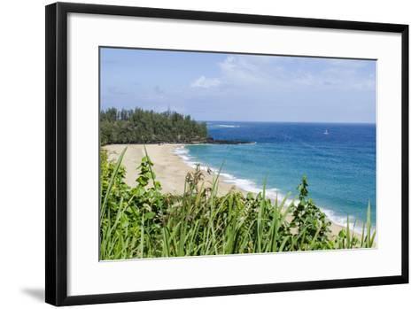 Waikoko Beach, Kauai, Hawaii, United States of America, Pacific-Michael DeFreitas-Framed Art Print