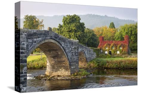 Tu Hwnt I'R Bont Tearoom and Pont Fawr (Big Bridge) in Autumn, Llanrwst, Snowdonia, Conwy, Wales-Stuart Black-Stretched Canvas Print