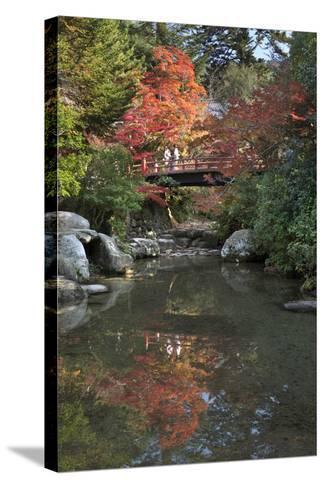 Japanese Bridge in Momijidani Park (Japanese Maple Park) in Autumn-Stuart Black-Stretched Canvas Print