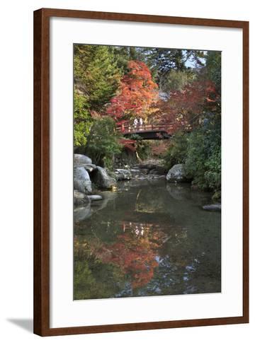 Japanese Bridge in Momijidani Park (Japanese Maple Park) in Autumn-Stuart Black-Framed Art Print