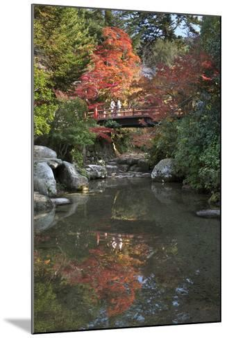 Japanese Bridge in Momijidani Park (Japanese Maple Park) in Autumn-Stuart Black-Mounted Photographic Print
