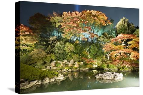 Night Illuminations of Temple Gardens, Shoren-In Temple, Southern Higashiyama, Kyoto, Japan-Stuart Black-Stretched Canvas Print