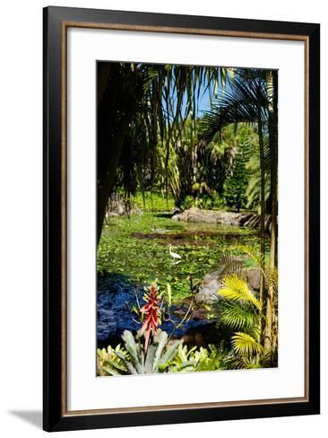 Nevis Botanical Garden, Nevis, St. Kitts and Nevis-Robert Harding-Framed Art Print