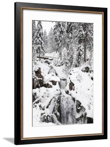 Triberg Waterfalls in Winter, Triberg, Black Forest, Baden-Wurttemberg, Germany, Europe-Markus Lange-Framed Art Print