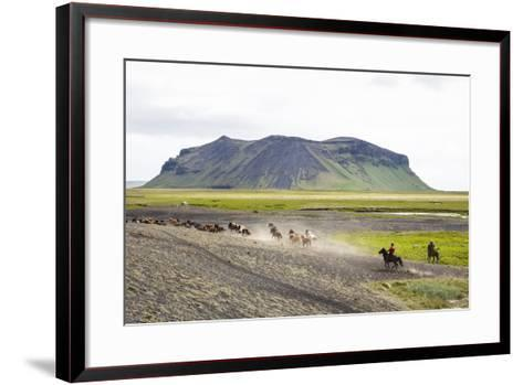Wild Horses Running, South Iceland, Iceland, Polar Regions-Yadid Levy-Framed Art Print