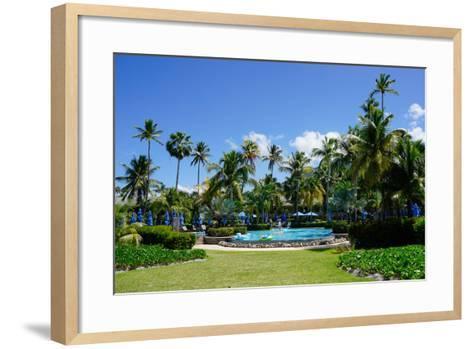 Nevis, St. Kitts and Nevis, Leeward Islands, West Indies, Caribbean, Central America-Robert Harding-Framed Art Print