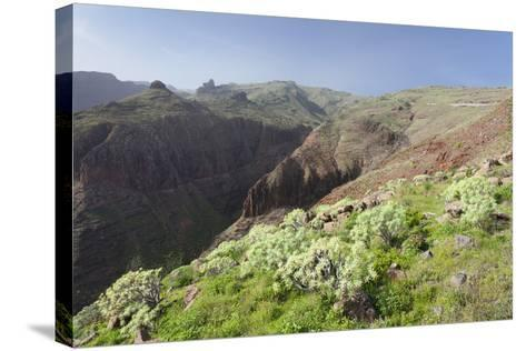 Barranco De Vera Valley, Roque Del Sombrero Mountain, Near San Sebastian-Markus Lange-Stretched Canvas Print