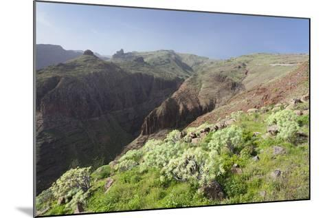 Barranco De Vera Valley, Roque Del Sombrero Mountain, Near San Sebastian-Markus Lange-Mounted Photographic Print