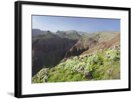 Barranco De Vera Valley, Roque Del Sombrero Mountain, Near San Sebastian-Markus Lange-Framed Art Print
