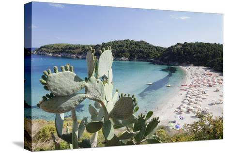 Fetovaia Beach, Island of Elba, Livorno Province, Tuscany, Italy-Markus Lange-Stretched Canvas Print