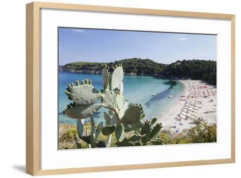 Fetovaia Beach, Island of Elba, Livorno Province, Tuscany, Italy-Markus Lange-Framed Art Print