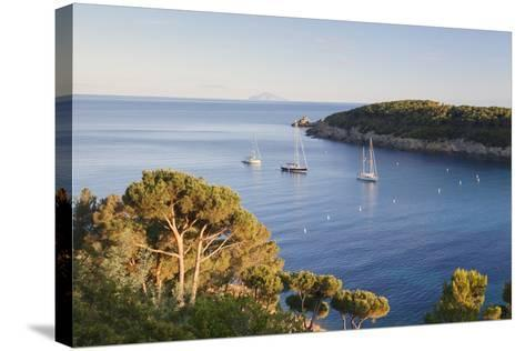 Sailing Boats in the Bay of Fetovaia at Sunset, Island of Elba, Livorno Province, Tuscany, Italy-Markus Lange-Stretched Canvas Print