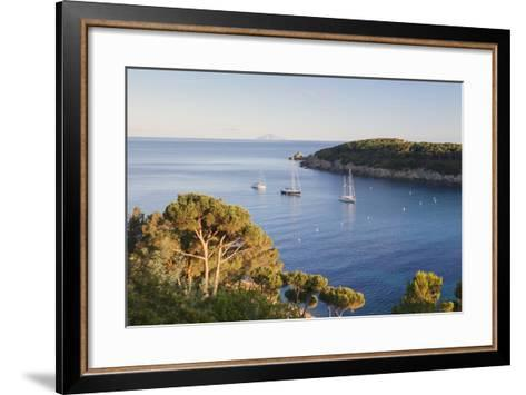 Sailing Boats in the Bay of Fetovaia at Sunset, Island of Elba, Livorno Province, Tuscany, Italy-Markus Lange-Framed Art Print
