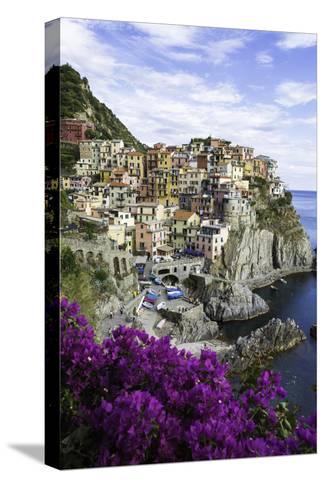 Manarola, Cinque Terre, UNESCO World Heritage Site, Liguria, Italy, Europe-Gavin Hellier-Stretched Canvas Print