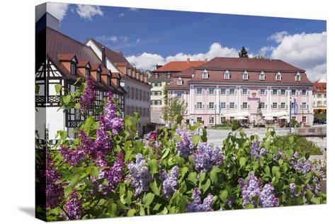 Donaueschingen, Black Forest, Baden Wurttemberg, Germany-Markus Lange-Stretched Canvas Print