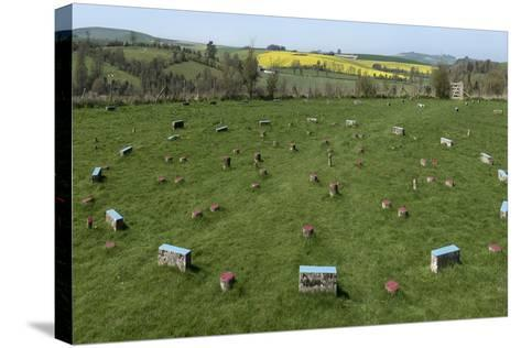 The Sanctuary, Ancient Ritual Site from About 2500Bc, Avebury, Wiltshire, England, United Kingdom-Rolf Richardson-Stretched Canvas Print