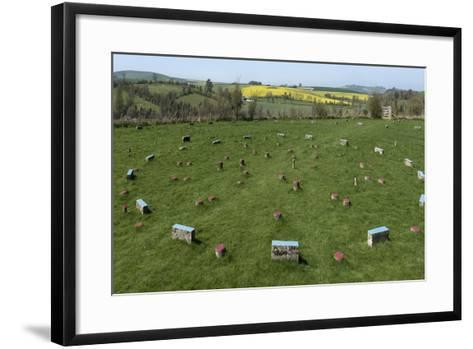 The Sanctuary, Ancient Ritual Site from About 2500Bc, Avebury, Wiltshire, England, United Kingdom-Rolf Richardson-Framed Art Print