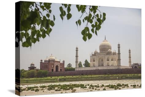 The Taj Mahal, Agra, Uttar Pradesh, India-Roberto Moiola-Stretched Canvas Print
