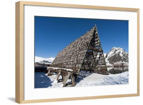 Cod Fish Drying, Svolvaer, Lofoten Islands, Nordland, Arctic, Norway, Scandinavia-Sergio Pitamitz-Framed Art Print