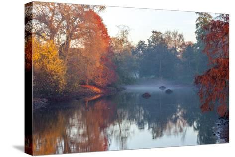 Autumn in Kew Gardens, UNESCO World Heritage Site, Kew, Greater London, England, UK-Simon Montgomery-Stretched Canvas Print