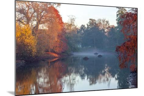 Autumn in Kew Gardens, UNESCO World Heritage Site, Kew, Greater London, England, UK-Simon Montgomery-Mounted Photographic Print