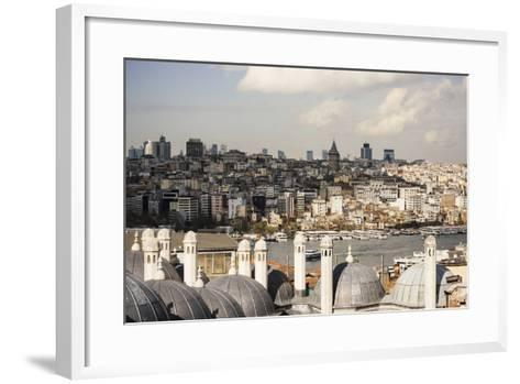 View of City Skyline from Suleymaniye Mosque, Istanbul, Turkey-Ben Pipe-Framed Art Print
