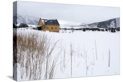 Fornes, Vesteralen Islands, Arctic, Norway, Scandinavia-Sergio Pitamitz-Stretched Canvas Print