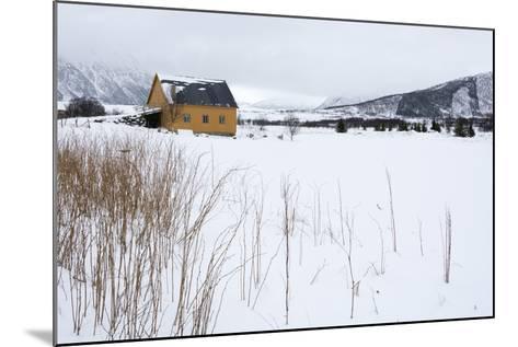 Fornes, Vesteralen Islands, Arctic, Norway, Scandinavia-Sergio Pitamitz-Mounted Photographic Print